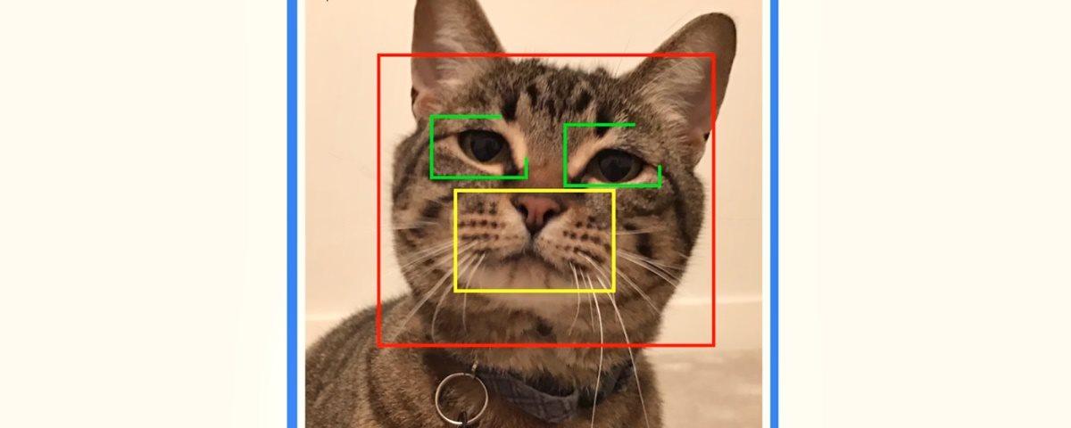 Reconhecimento facial para abrir portinholas dos pets