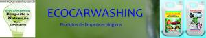 ecocarwashing