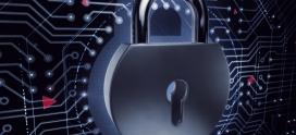 Grande maioria das empresas tem níveis de cibersegurança limitados