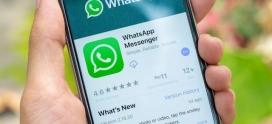 WhatsApp detecta falha que permite instalar software espião. E recomenda atualização