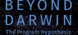 Nem Deus, nem Darwin. E se o universo resultar de um programa como se fosse um computador?